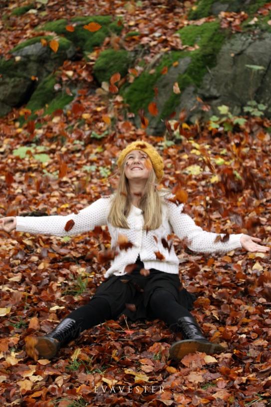 När löven faller sign